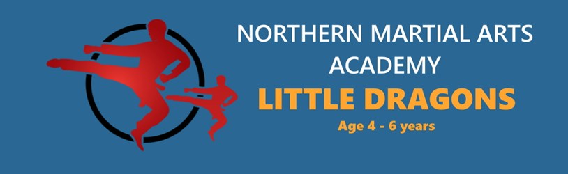 Little Dragons, Children Martial Arts classes